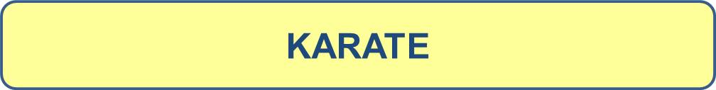 Ksr titre karate